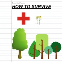 How to Survive the Wilderness