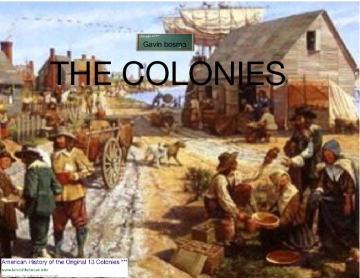 Colonies assessment