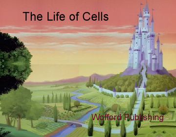 The Life of CELLS