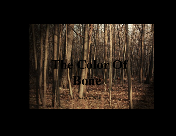 The Color Of Bone