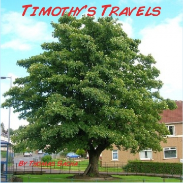 Timothy's Travels