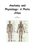Anatomy and Physiology: A Photo Atlas