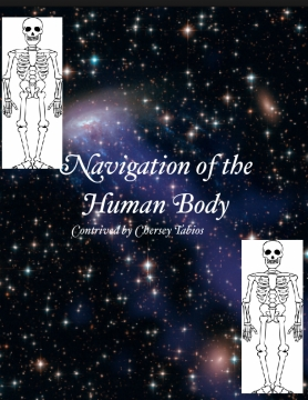 Navigation of the Body Systems