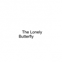 The lonely butterfly
