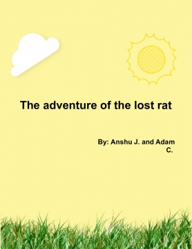 The Lost Rat