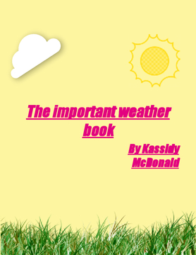 The important weather book