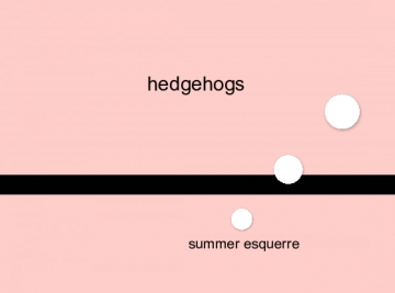 my facts on hedgehogs