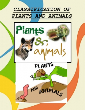 classifying plant and animals
