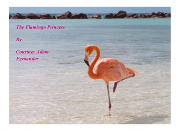 The Flamingo Princess