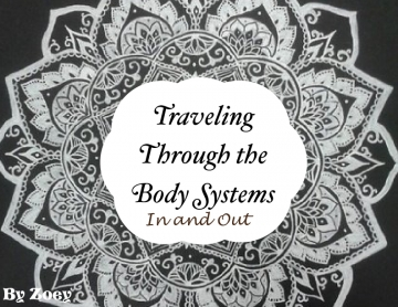 Traveling through the Body Systems