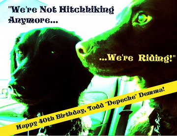 We're Not Hitchhiking Anymore. We're Riding!