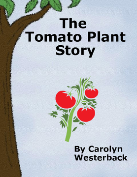 The Tomato Plant Story
