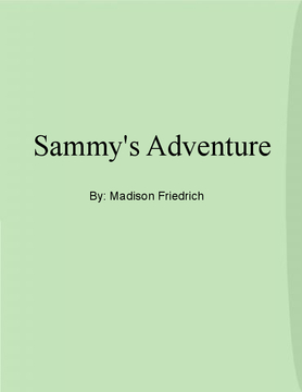 Sammy's Adventure
