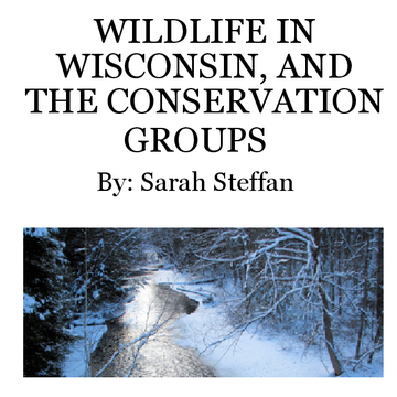 Wildlife in Wisconsin, and The Conservation of It