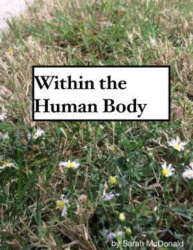 Within the Human Body