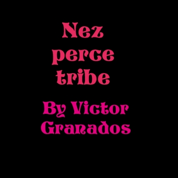 Nez Pearce tribe