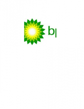 BP Holdings Management: Getting to Know BPHM