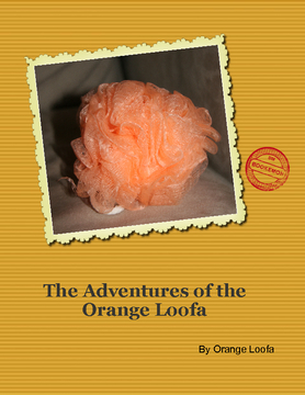 A Year in the Life of Orange Loofa