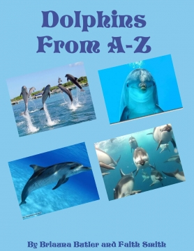 Dolphins from A-Z