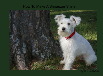 How To Make A Shnauzer Smile