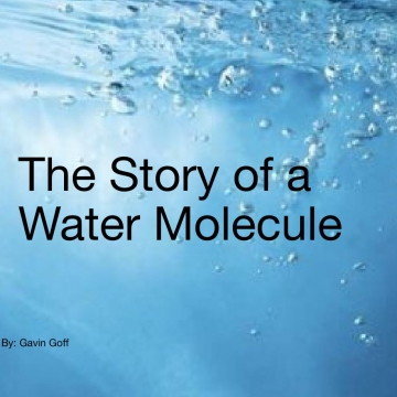 The story of a water molecule