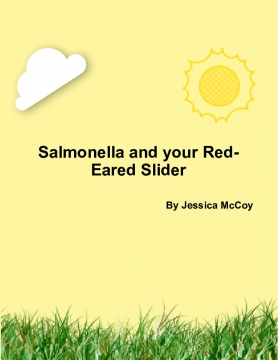 Salmonella and your Red-Eared Slider