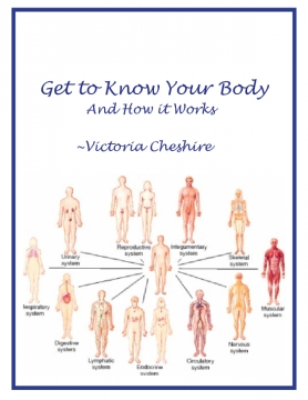 Getting to Know Your Body