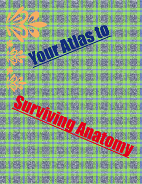 Your Atlas to Surviving Anatomy