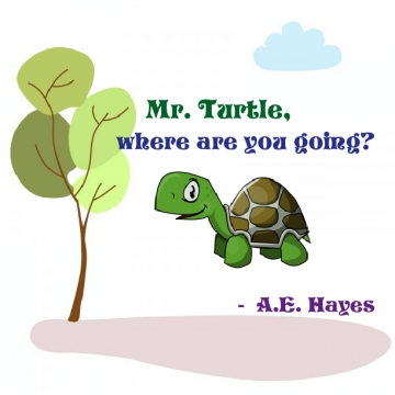 Mr. Turtle, where are you going?