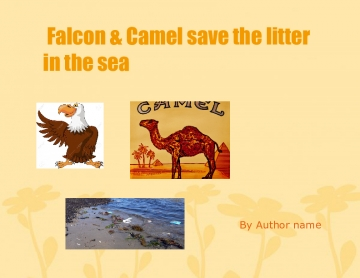 Hawky & Camel save litter in the sea