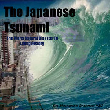 The Japanese Tsunami
