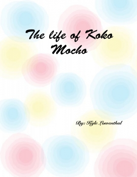 The Life of Koko Mocho