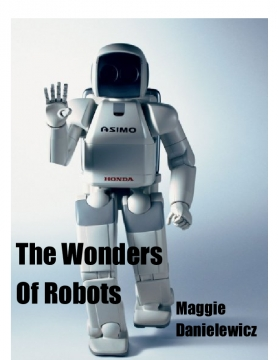 The Wonders Of Robots