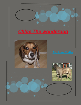 Chloe the Wonderdog