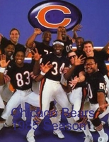 Chicago Bears 1985 Season