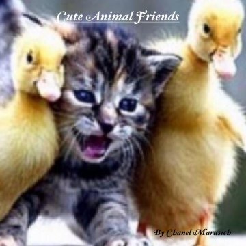 Cute Animal Friends