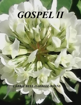 THE GOSPEL II