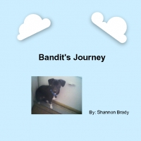 Bandit's Journey