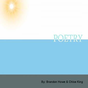 CI 378 Poetry Book