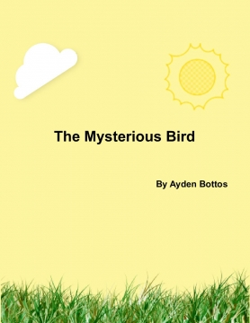 The Mysterious Bird