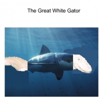the great white gator