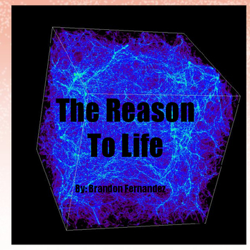 The Reason To Life