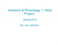 Anatomy & Physiology: A Photo Atlas