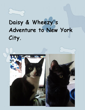 Daisy & Wheezy's Adventure