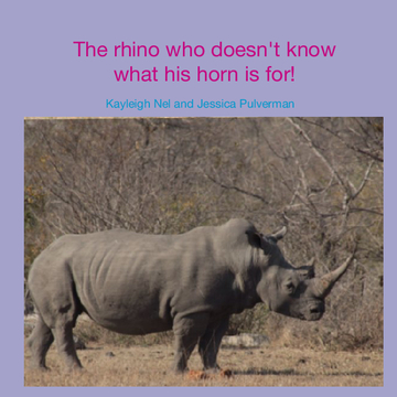 The rhino who doesn't know what his horn is for!