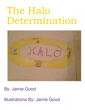 The Halo Determination
