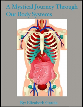 A Magical Journey Through Our Body Systems