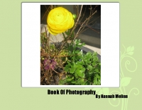 Bee's Book of Photography