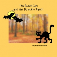 The Black Cat in the Pumpkin Patch