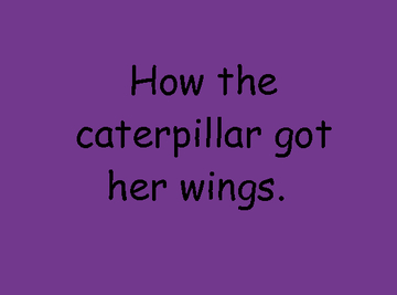 How the caterpillar got her wings